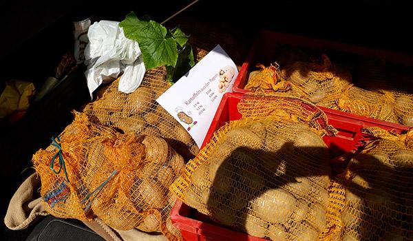 Dorftreff Kartoffeln